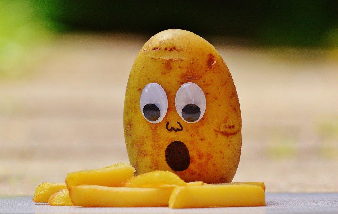The potato eye