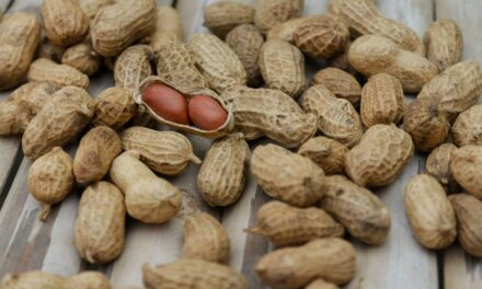 The Estranged Peanut(Groundnut) and Why We Should Bring It Back To Our Plates