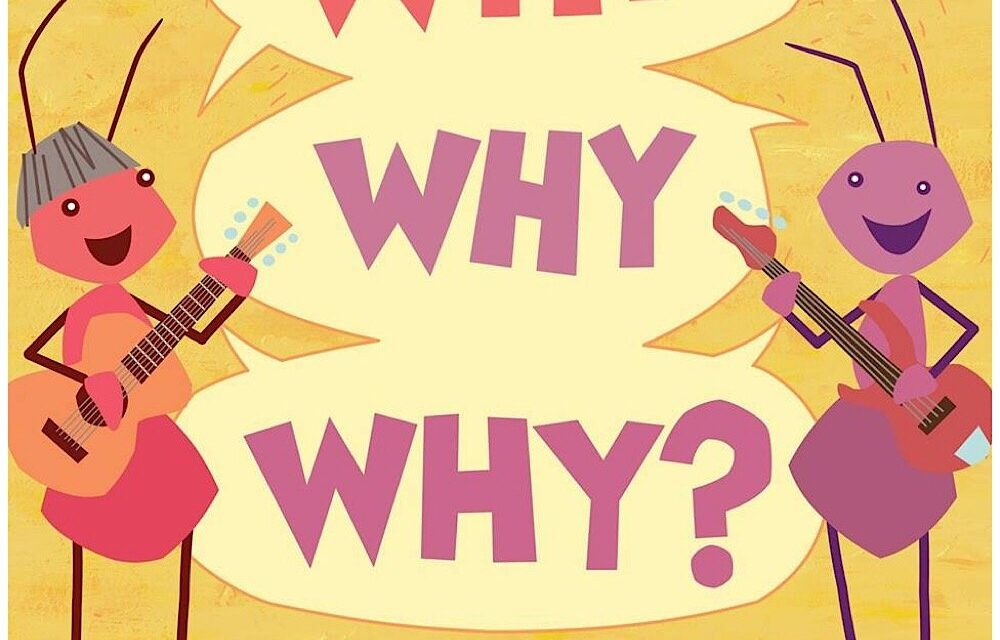 """Ants Ants Ants Release Album Titled """"Why Why Why?"""""""