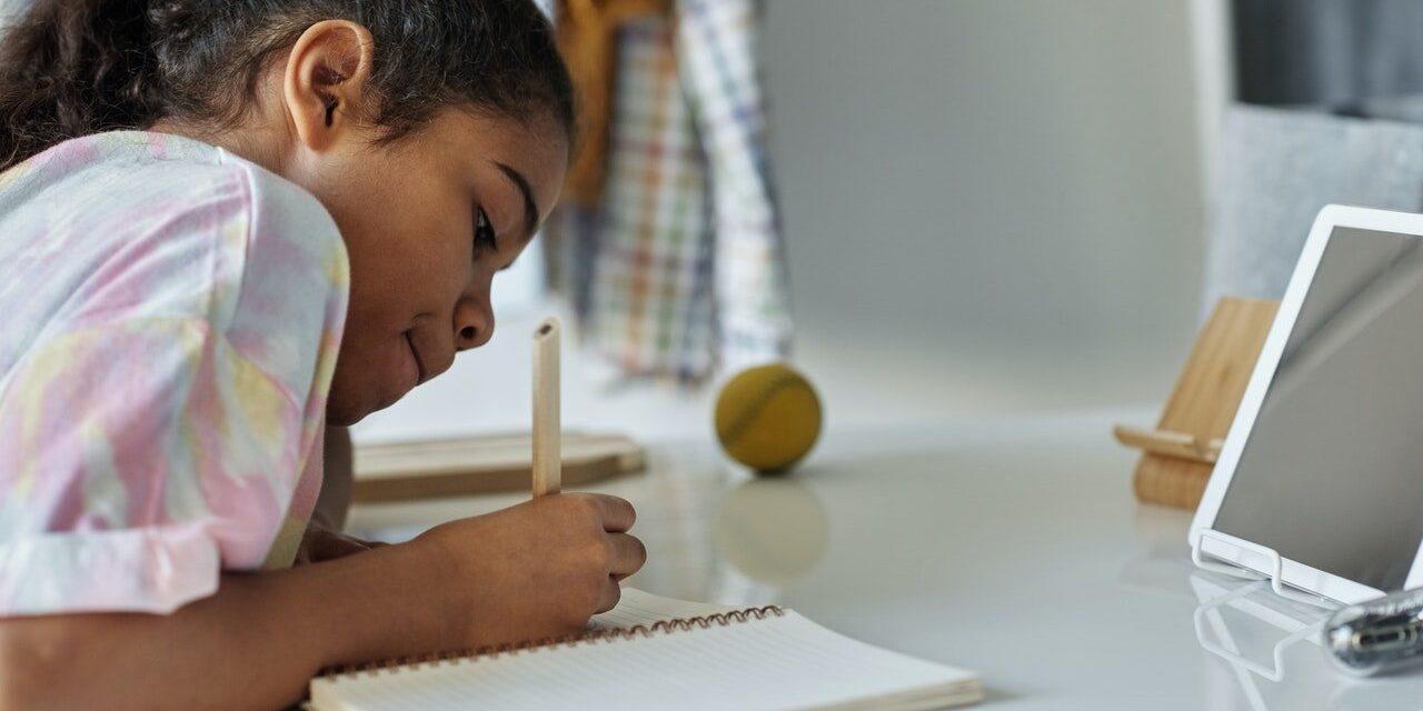 Eduaraa: Bridging the digital divide for the digital learning revolution